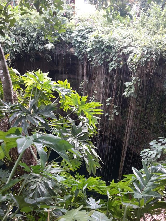 Si inizia a vedere il cenote